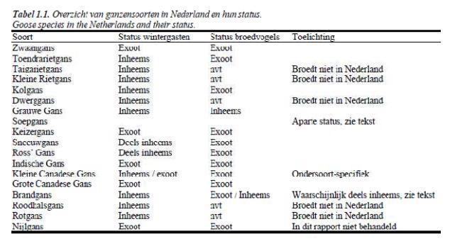 Tabel exoten